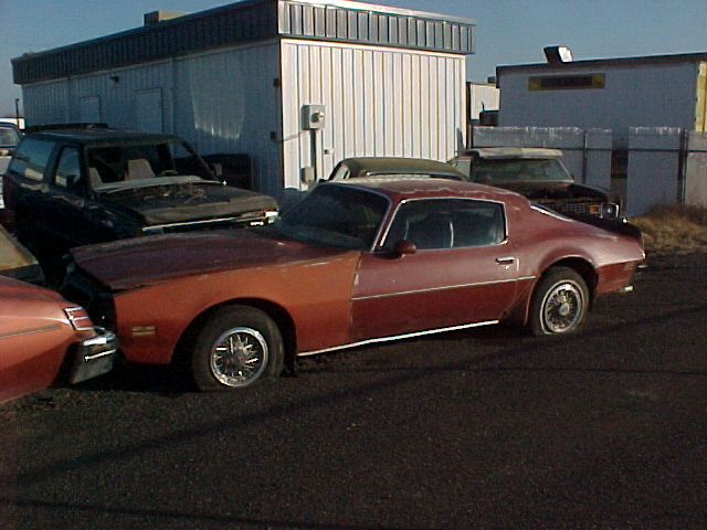 1974 Firebird Olds V8, runs, rough all over.  $650 n-129